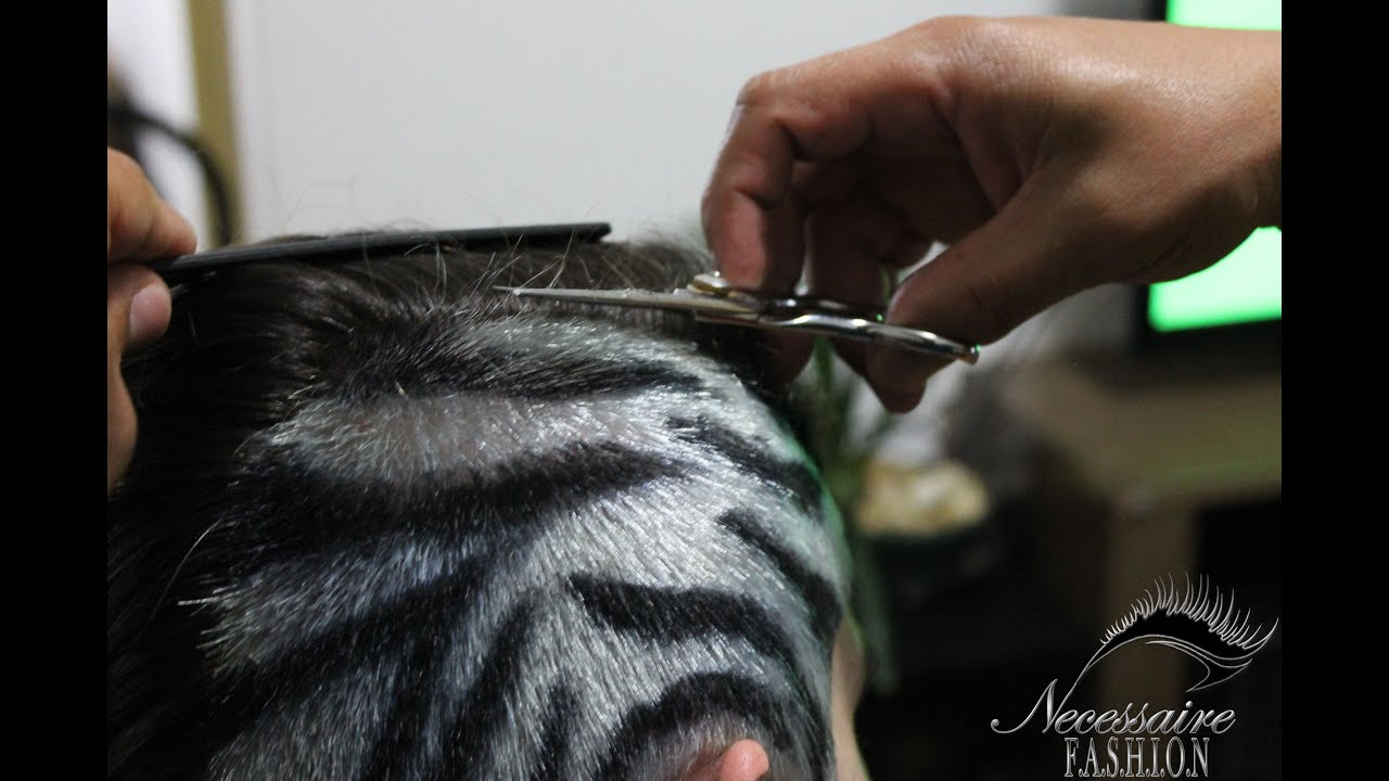 Zebra Hair Cabelo Animal Print Youtube