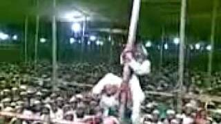 চরমোনাই পীরের মুরিদের কান্ড দেখুন