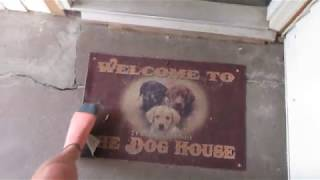 House Tour - The Dog House - Service Dog Internship!
