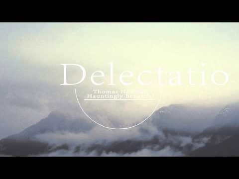 Thomas Newman - Hauntingly Beautiful ( Delectatio Remix )