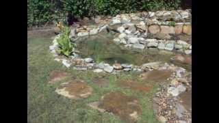 Beautiful Backyard Pond By Enviroscapela