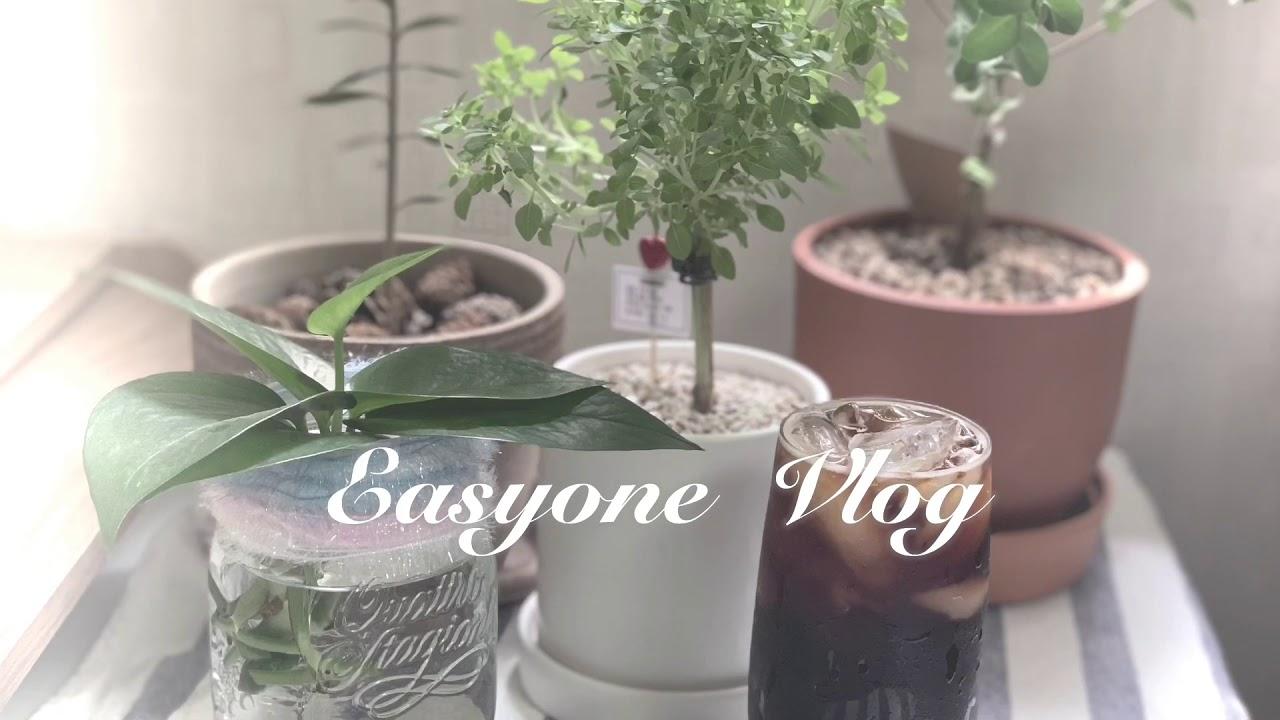 이지원쌤 vlog - 피아노연주와 함께하는 일상 'I love coffee _ Java Jive'