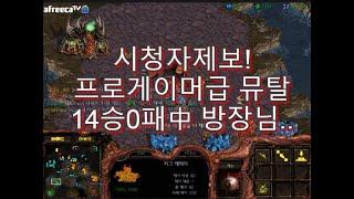 [스틱] 시청자제보 14승0패중인 초고수 프로게이머급 뮤탈컨 홈팀방장 헌터 스타 팀플 StarCraft Hunter TeamPlay