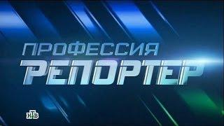ШОКОЛАДНЫЙ ЗАЯЦ - Порошенко (2014)