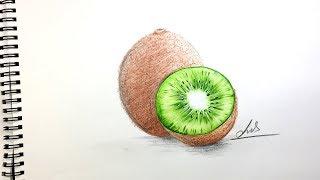 How to Draw a Kİwi Fruit Step By Step