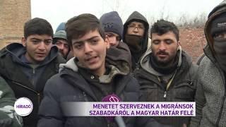 Menetet szerveznek a migránsok Szabadkáról a magyar határ felé
