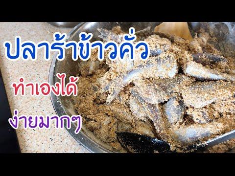 #วิธีหมักปลาร้า | ทำปลาร้าข้าวคั่วไว้ทานเองที่บ้าน ทำง่ายมาก