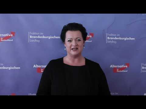 """Familienpolitisches Signal der AfD-Fraktion im Landtag Brandenburg / Birgit Bessin: """"Die Altparteien haben vor dem demographischen Wandel kapituliert - die AfD tut etwas"""""""