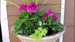 How to plant designer containers with Style!/Garden Style nw