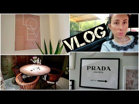 INCA***TA NERA!!   LITIGIO in diretta!   La Mia NUOVA GALLERY WALL     Vlog    