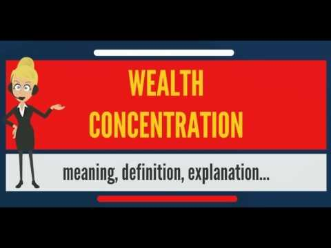 What is WEALTH CONCENTRATION? What does WEALTH CONCENTRATION mean?