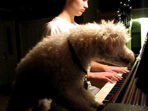 Bentley Practices Piano.AVI