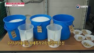 토마토수경재배 토마토 양액 제조기술