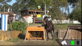 Cross Country Jumping - ST37
