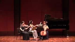 Schubert: Notturno for Piano Trio in E flat Major, D. 897