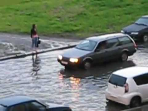 Видео как мужчина перенес ленива через дорогу