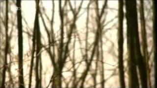 ZDF Todesfalle Internet im Chat mit dem Mörder 21.04.2011