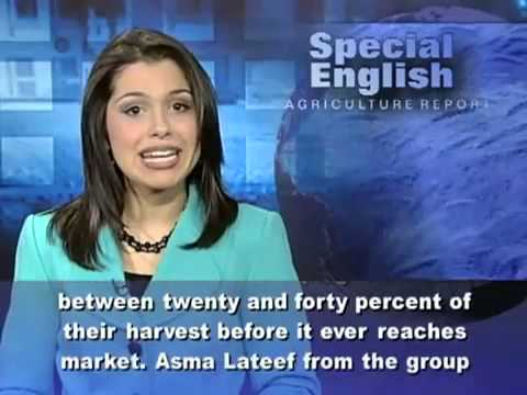 voa special english 1