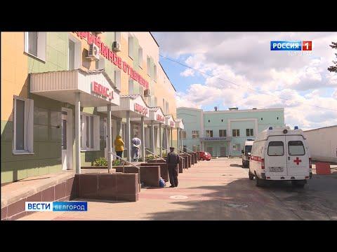 Заболеваемость коронавирусом в Белгородской области устойчиво снижается