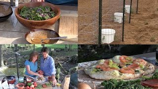 Make a Salad From Your Yard, Homemade Dressing, & Pizza Oven (Episode #414)