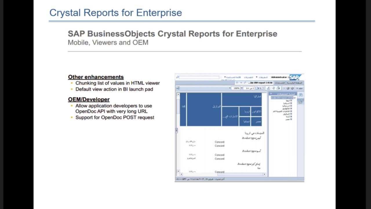 Business Objects Crystal Reports 4 1 Upgrade