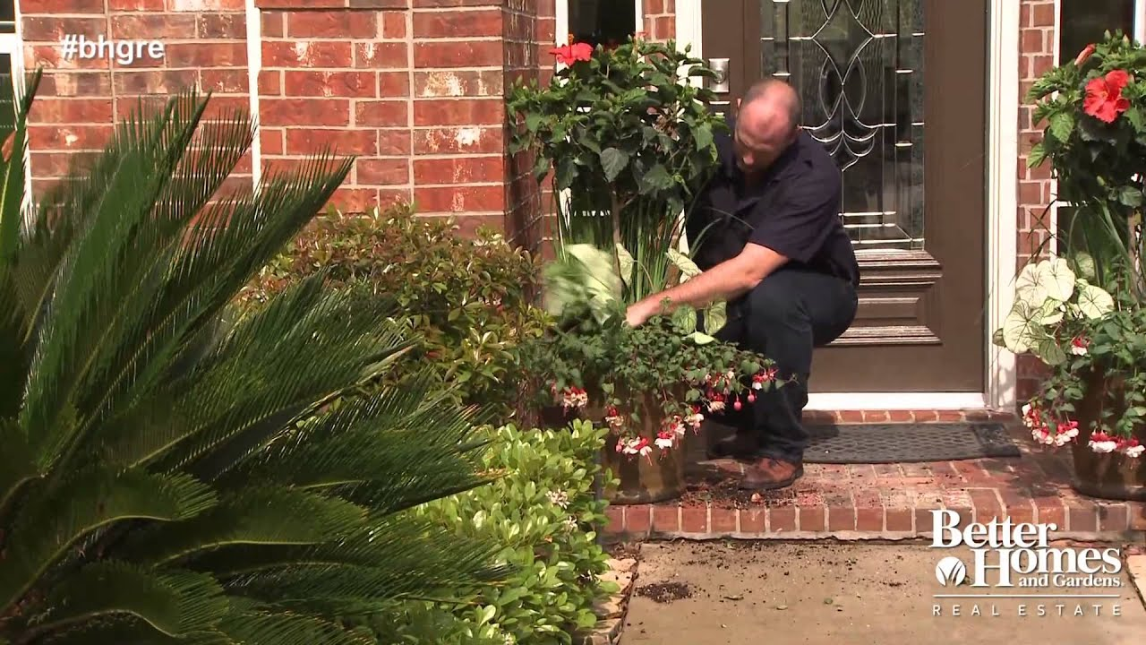 Easy Ways To Boost Curb Appeal Youtube