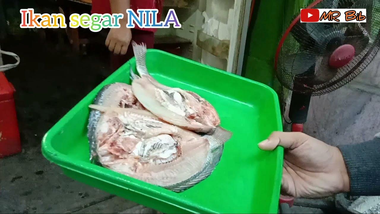 Ikan Bakar Waduk Wonorejo Tulungagung