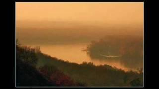Rastao Sam Pored Dunava