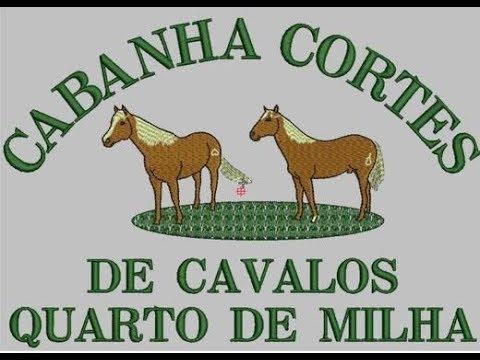 Canal Campeiro
