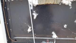 troca de l de vidro fogo eletrolux entrou rato 61 98131 4376 ou 99824 8024 whatssap braslia