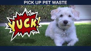 Stormwater - Pets   Maricopa County Environmental Services Dept.