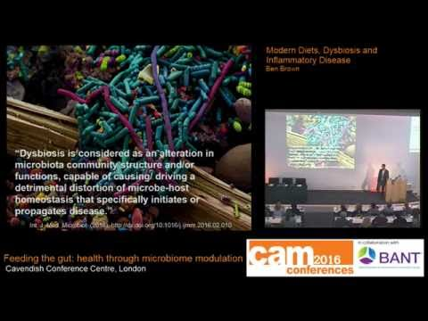 Modern Diets, Dysbiosis and Inflammatory Disease