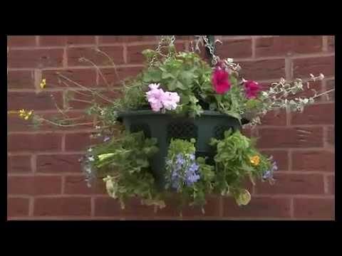 Vasi sospesi per piante youtube for Vasi sospesi