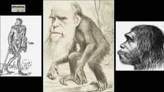 Die Anfänge der Menschheit 3 von 3   Homo sapiens, der letzte seiner Art000000 444 004827 045