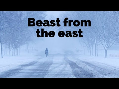 What is a beast from the east?