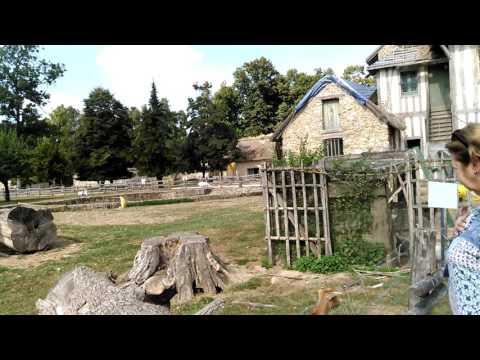 Versailles - Marie Antoinette Petite Trianon Farm - with Stephanie & @Gail Wade