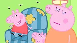小猪佩奇 | 精选合集 | 60分钟 | 猪爸爸的旧椅子 | 粉红猪小妹|Peppa Pig Chinese |动画