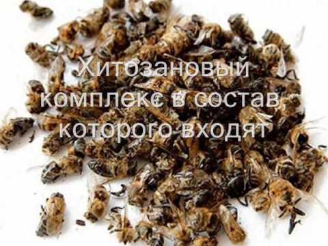 Гепатит С :: Остановка Гепатит С - виртуальное