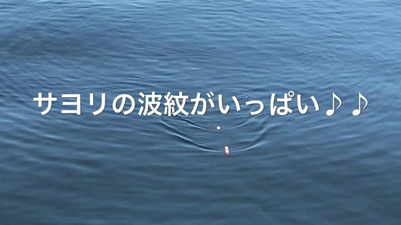 鳴尾 浜 海 釣り 公園
