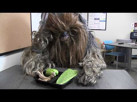 Chewbacca joins Fort Worth Police Department
