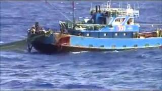 Japanese coastguard hit Chinese fishing boat at Diaoyu Island Video 3-钓鱼岛撞船录像全版6/3