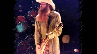 ZZ-Top - Have you Heard?