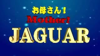 JAGUAR - お母さん!