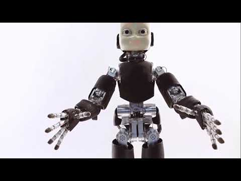 Humanoid with Artificial Intelligence