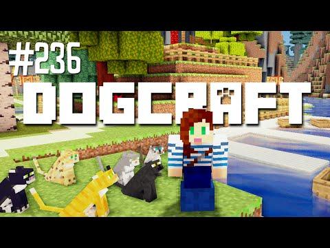 CAT NINJA - DOGCRAFT (EP.236)