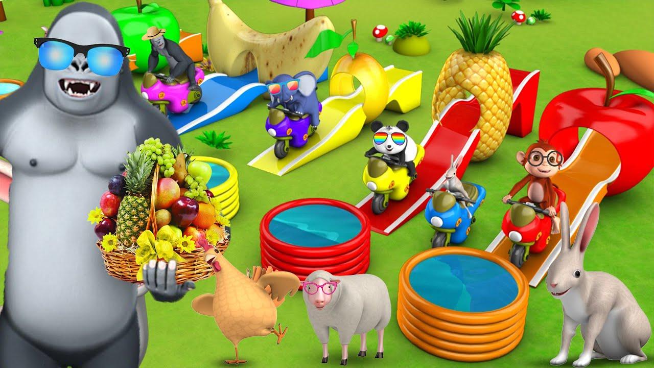 Cartoon Animals Fun Play on Fruit Slider | Gorilla & Forest Animals | Barn Animals | Funny Animals