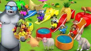Cartoon Animals Fun Play on Fruit Slider   Gorilla & Forest Animals   Barn Animals   Funny Animals