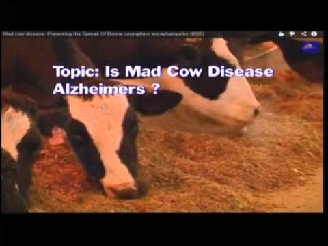 Is Alzheimer's Mad Cow Disease (part one)?