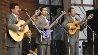 Malagueña y Pajaro Campana - Trio Martino