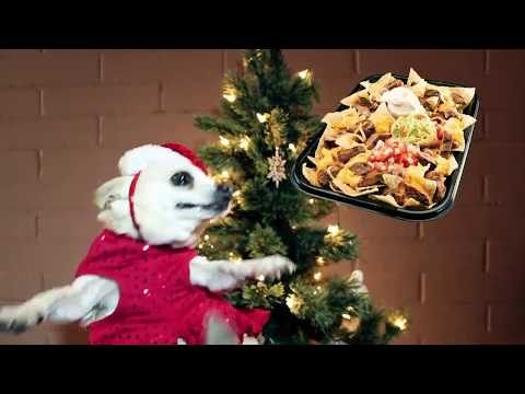 Singing Chihuahua - Christmas Song 2:  Jingle Bells